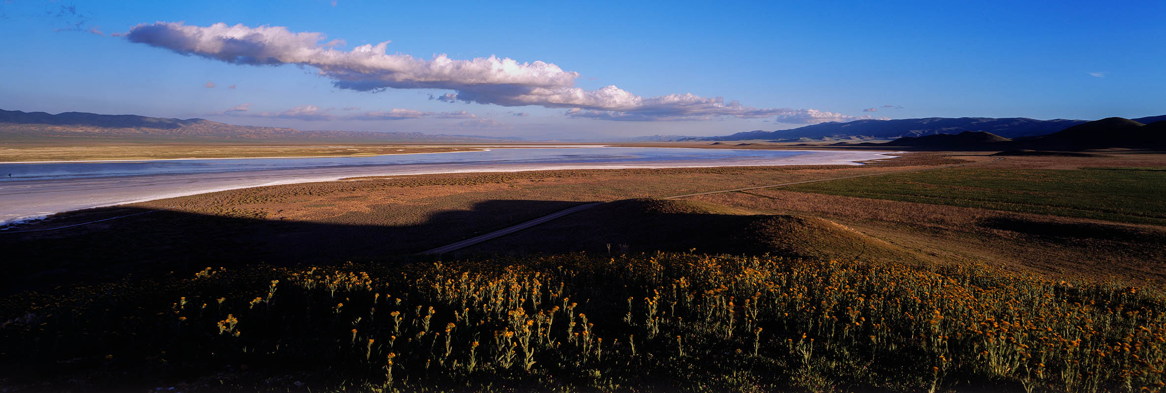 Soda Lake in the Carrizo Plains.