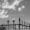 Cemetery28x28_copy