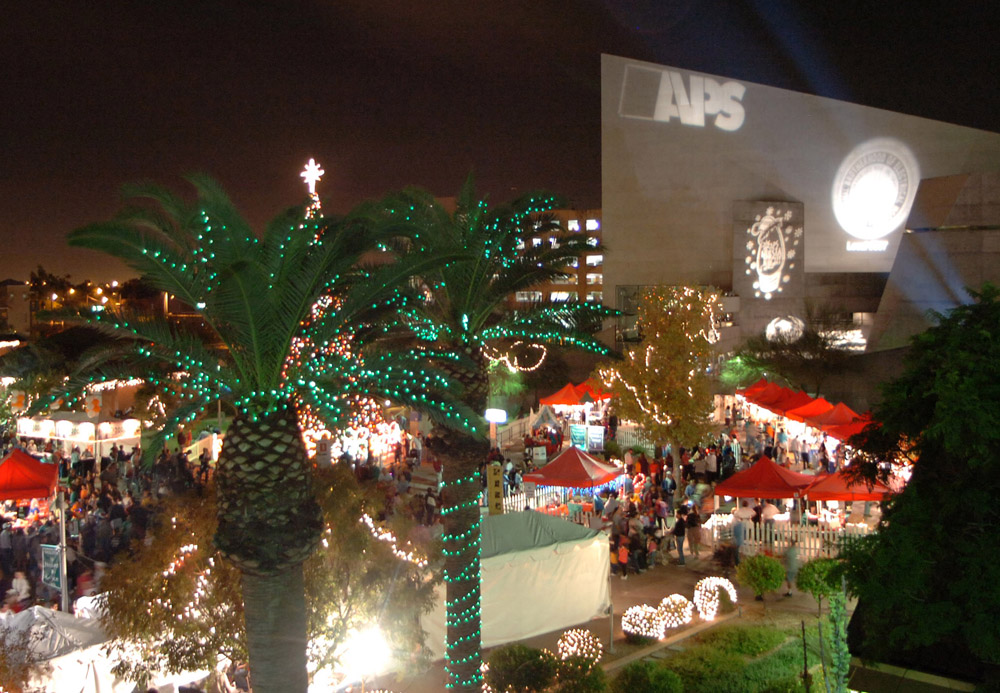 Holiday Festival - APS