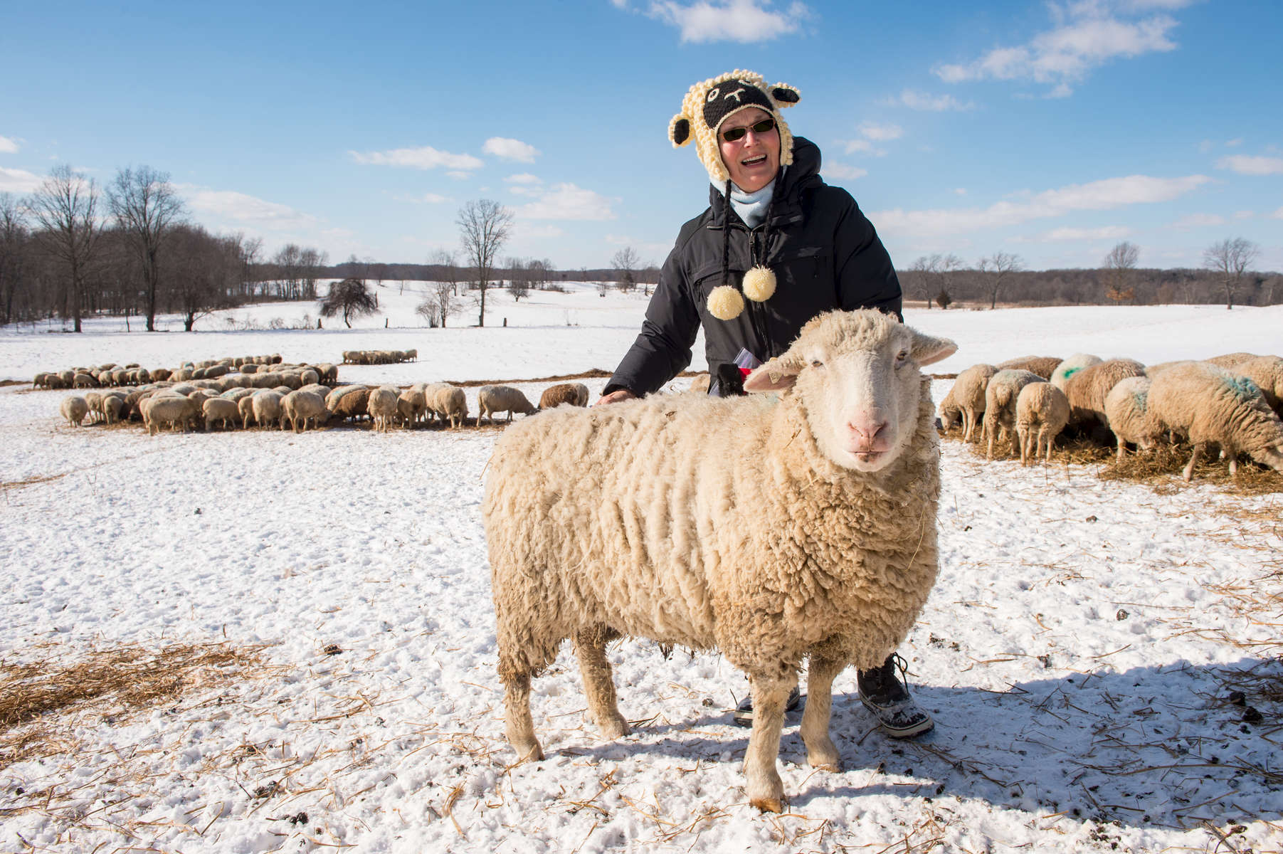 February 3, 2017; SuzAnne Akhavan-Tafti, '91M.A. inspects the sheep on her 360-acre Full Circle Organic Farm in Howell, Michigan. (Photo by Barbara Johnston/University of Notre Dame)
