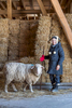SuzAnne Akhavan-Tafti, '91M.A. with her favorite sheep, Baby a 5-year old wether that has earned permanent residency at Full Circle Organic Farm in Howell, Michigan.