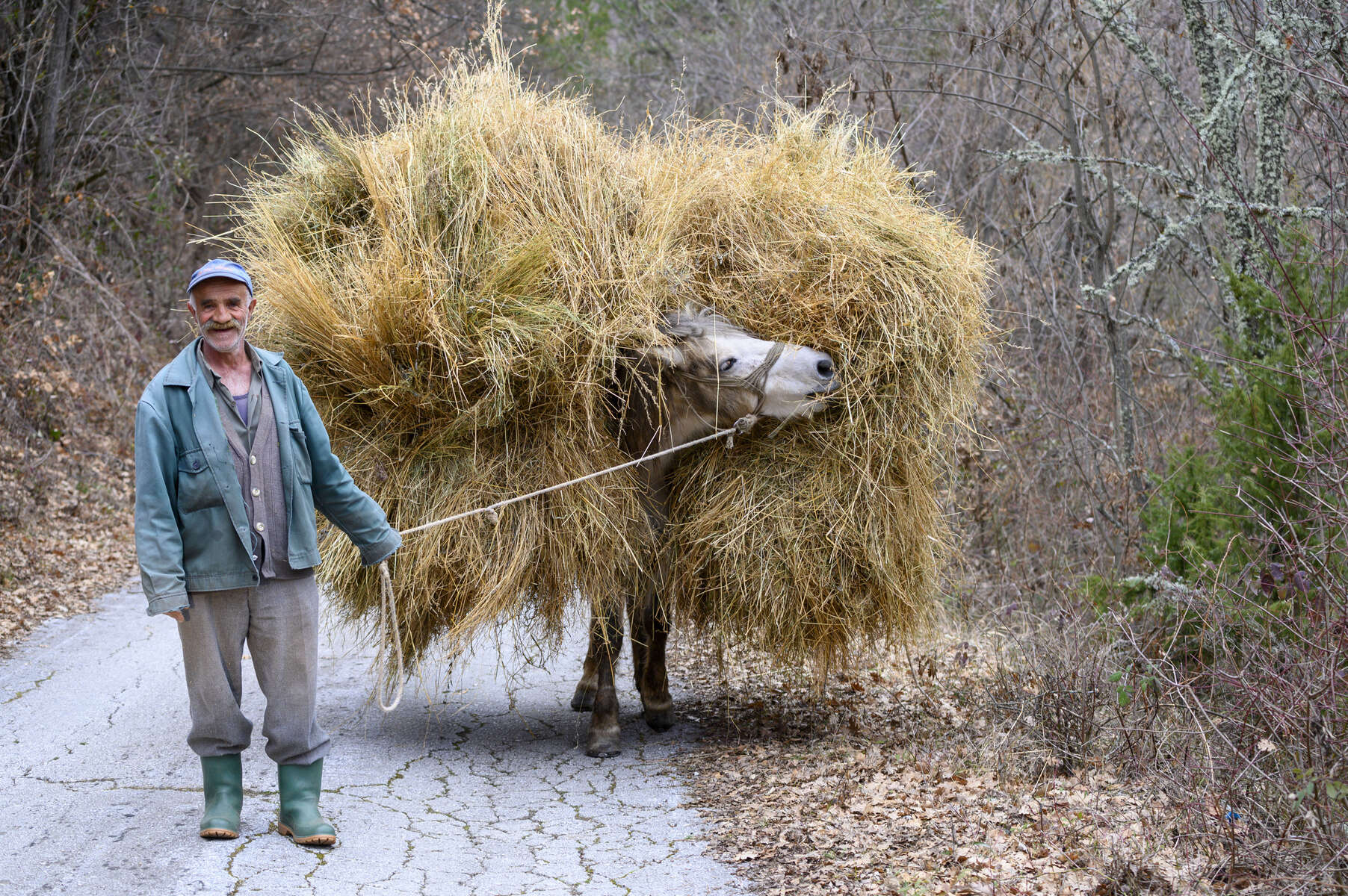 March 6, 2020; A farmer transports hay with his donkey in Poreche, North Macedonia. MBA students from Notre Dame traveled to the region to study agricultural businesses as part of their Business on the Frontlines course which examines the impact of business in societies affected by extreme poverty and conflict. BOTFL provides opportunities for students and alumni to engage and partner with non-profit organizations and multi-national companies to harness the dynamism of businesses to build these communities before they tip into conflict.