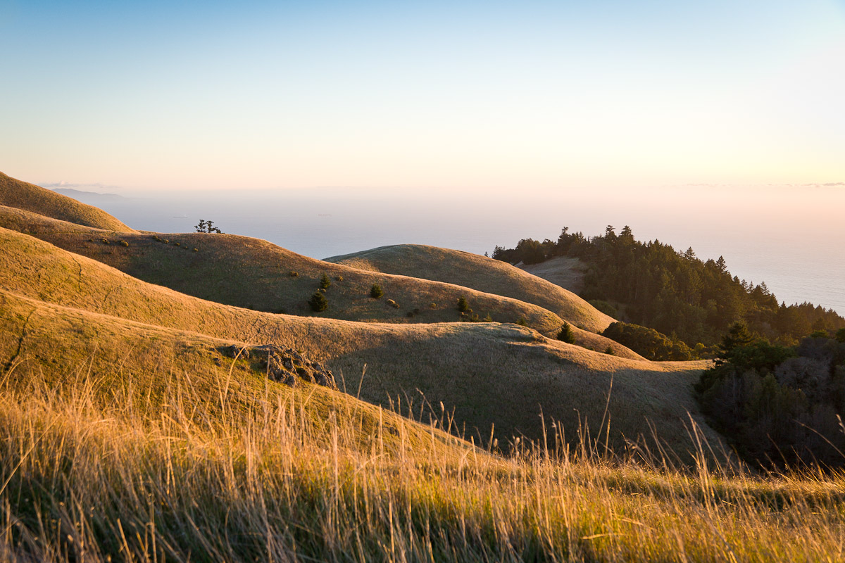 This is the Bolinas Ridge looking South West in the early evening. Photo by Jay Graham
