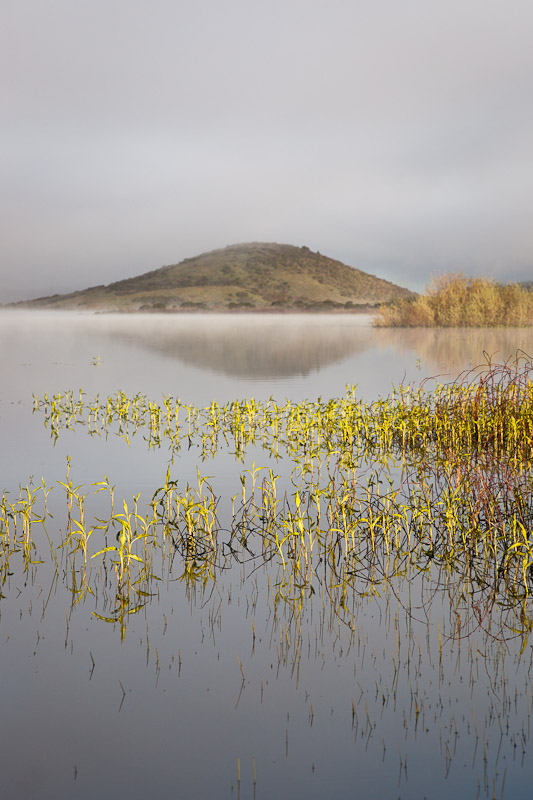 Early morning reflections on Lake Nicasio shot in mid April at about 6:30 in the morning. Photo by Jay Graham