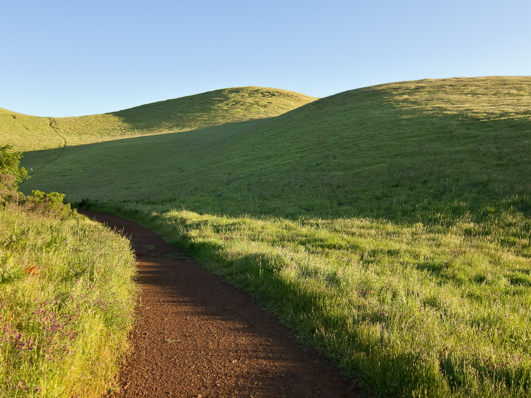 This photograph was taken on one of my regular Tuesday morning mt. bike rides. We climb 1,100 ft. to the top of Bald Hill in San Anselmo, CA every Tuesday morning at 7:00 am. This is looking toward the top of Bald Hill on the way up. Photograph by Jay Graham