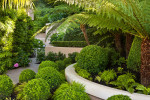 Lush entry garden at a home in Sausalito. Photo © 2011 Jay Graham, all rights reserved