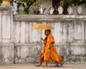 Two young novice monks walking with an umbrella after performing the dailymorning alms collection called Tak Bat. This photo won honorable mention in the International Photography Awards (IPA) 2009. Photo by Jay Graham