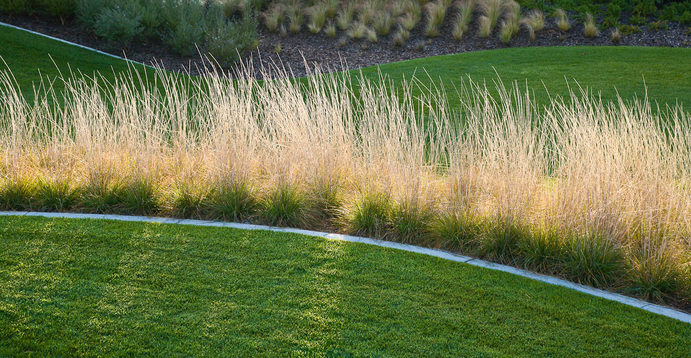 Union Point Park is an exciting new nine-acre waterfront venue located near Coast Guard Island, just south of the Embarcadero area shoreline.  The park offers waterfront access, park activities, and attractive open space in an area of Oakland that has lacked such opportunities. Landscaping by ValleyCrest. Photo by Jay Graham.