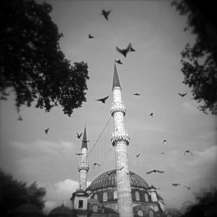 birds, black, mosque, pray, fly, holy, religion, faith, islam, muslim, worship,