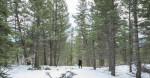 Banff_Winter_Engagement_071