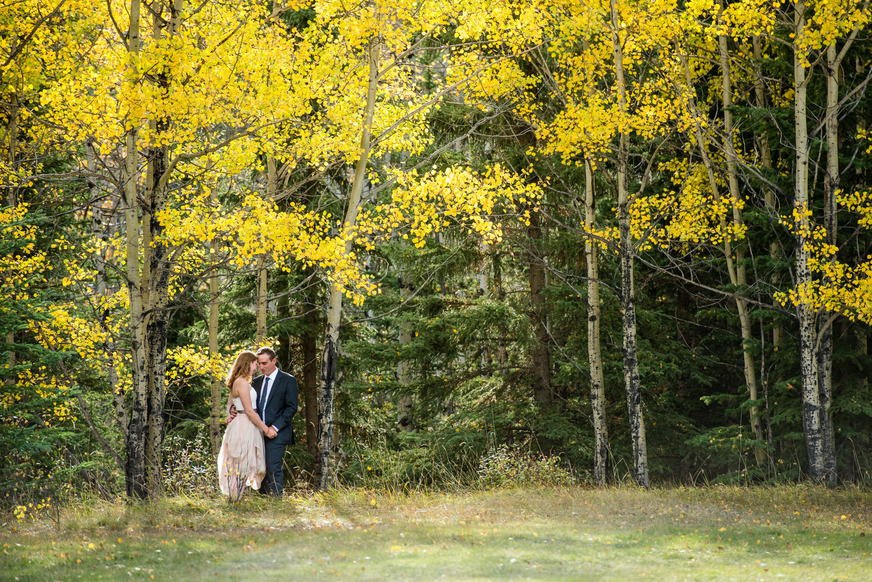 Canmore-Post-Wedding-Session-016