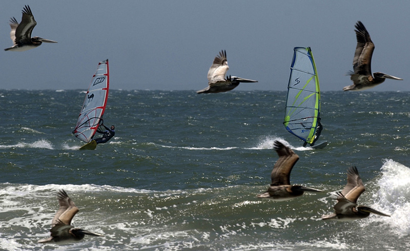 Framed by a flock of pelicans, Shay Yablonka, left, and Hisato Mizuno, right, windsurf at Surfers Point in Ventura, Calif.  Photo by Matt McClain