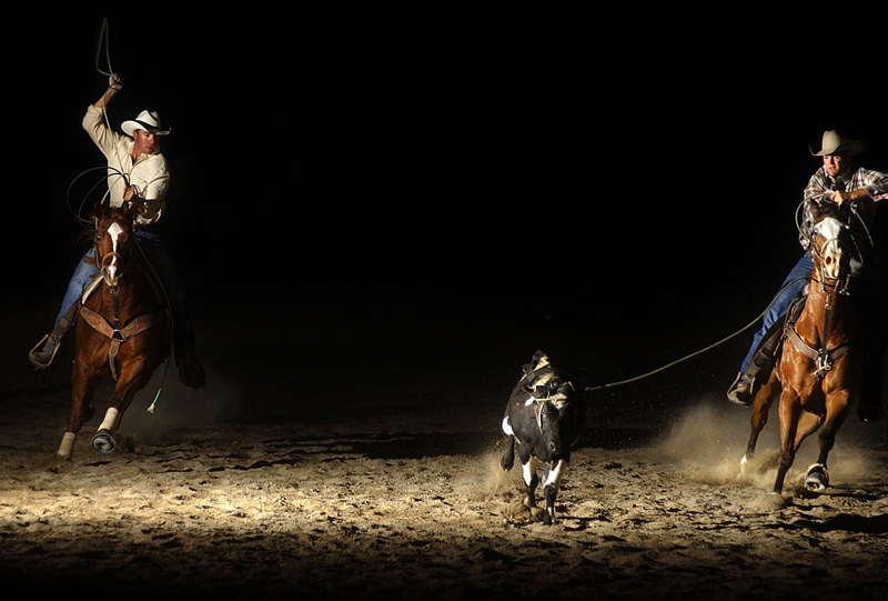 Tucker Robinson, 25, left, and Brad Haley, 26, right, practice their roping at Robinson's family ranch in Oak View, Calif.  Photo by Matt McClain