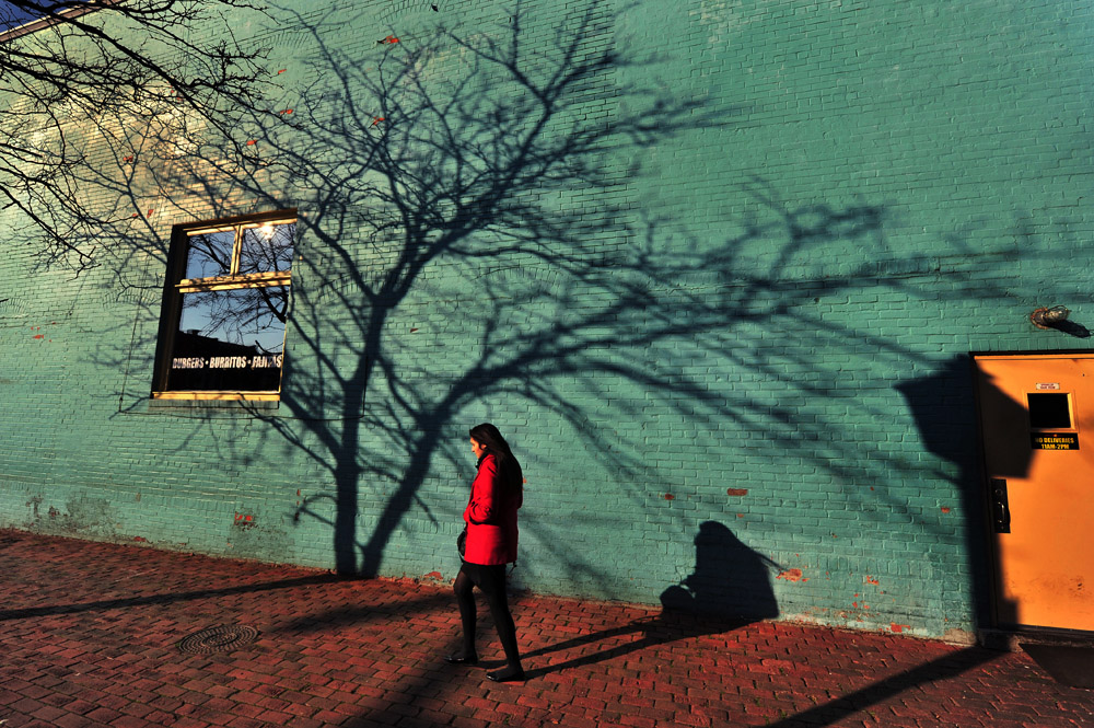 A shadow of a tree with bare branches stretches across a building along N. Columbus St. as Ruhi Mirza of Sterling, VA makes her way on Wednesday December 19, 2012 in Alexandria, VA.  (Photo by Matt McClain for The Washington Post)