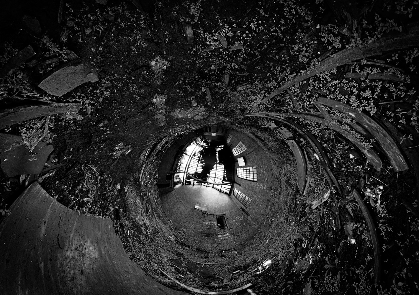web_bw_0544_stereographic_down_Panorama-1