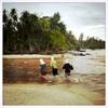 Siberut Island, Mentawai Indonesia. 2016