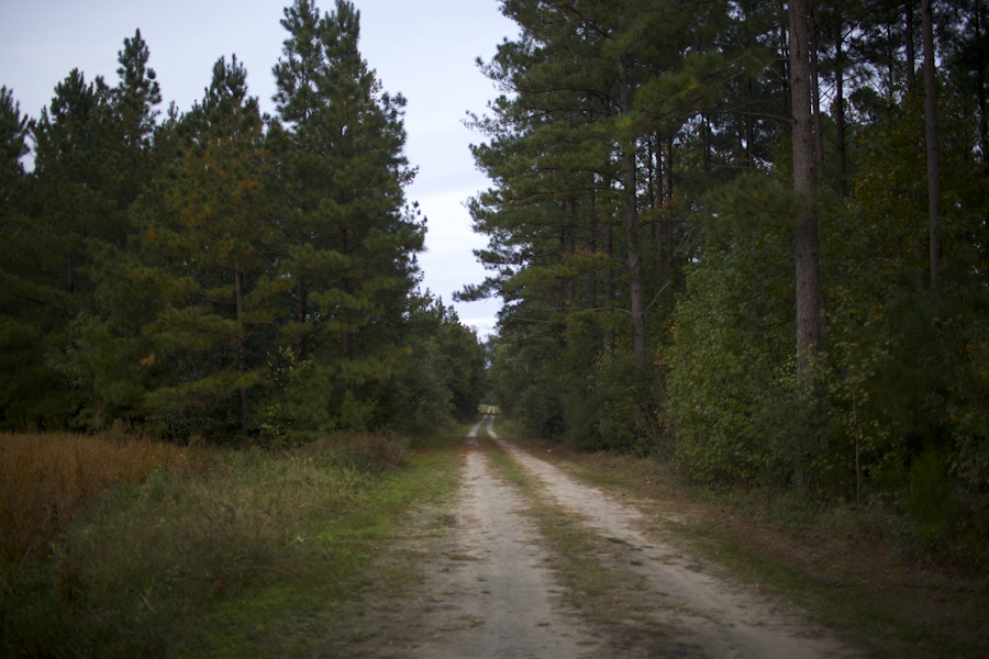 The road to Mr. Frampton's childhood barn house that was built in the 1800's in Varnville, SC. Nov. 2014