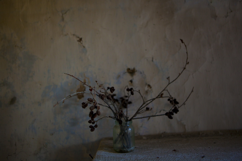 A dried out plant inside a labor camp where German prisoners including women and children served time and were executed. Located outside of Korotkeros, Russia.
