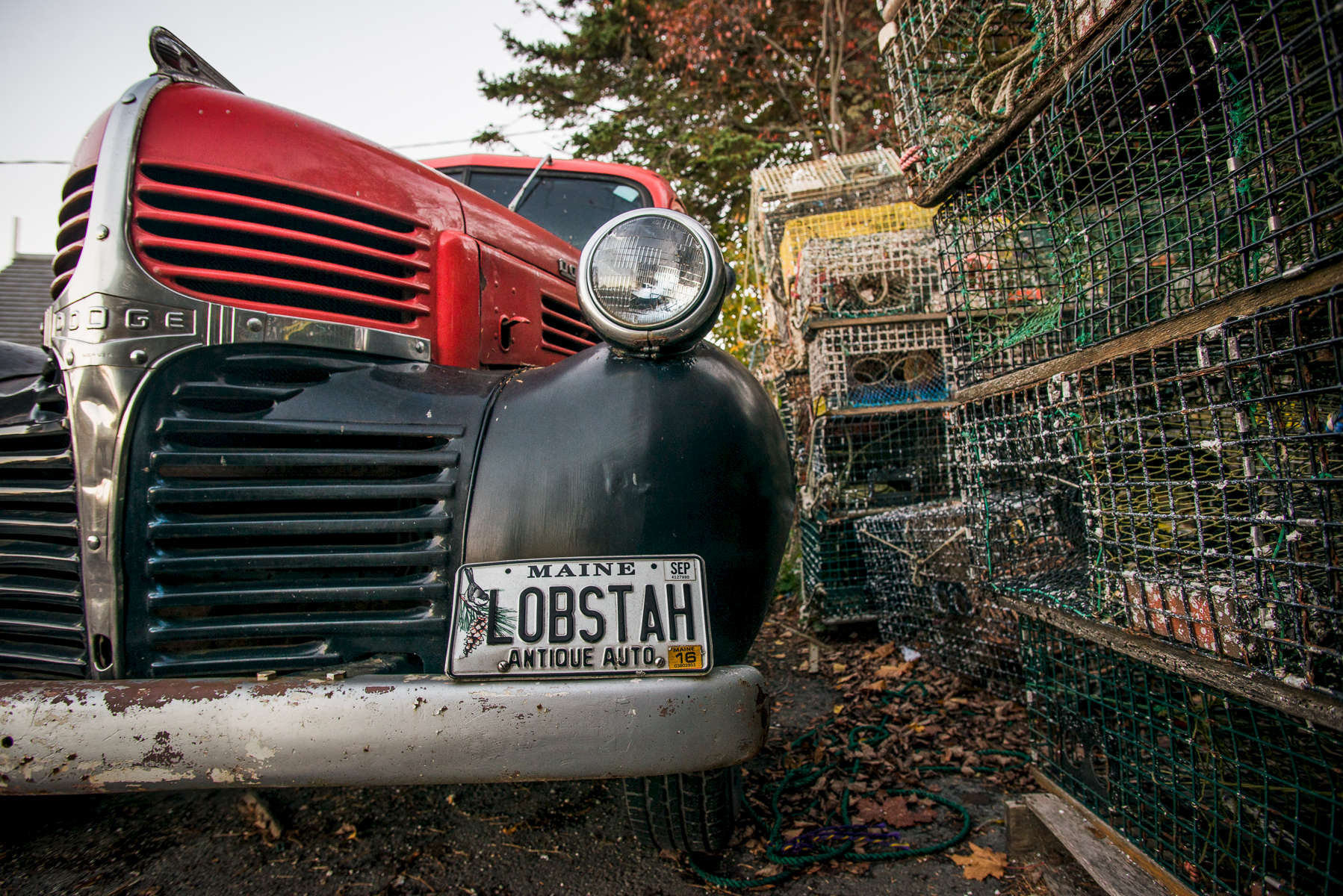 Stock image, Bernard, Maine, Thurston's Lobster Pound, Antique car, lobster traps, Acadia National Park region, Maine, Bass Harbor