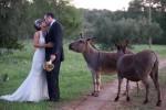 20091029_wedding_SLS_063