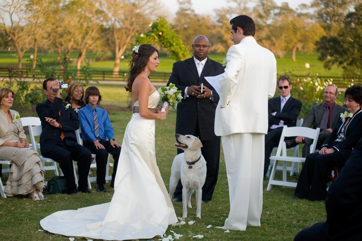 20091126_wedding_SLS_019