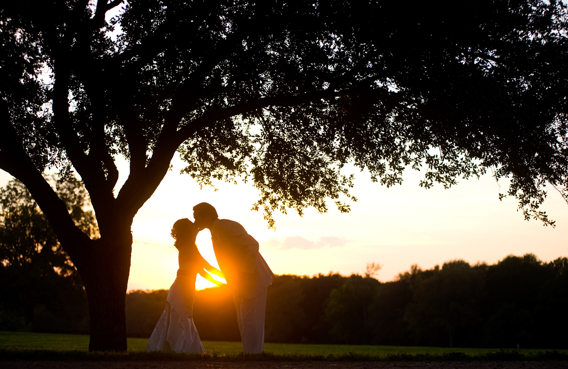 20091126_wedding_SLS_033