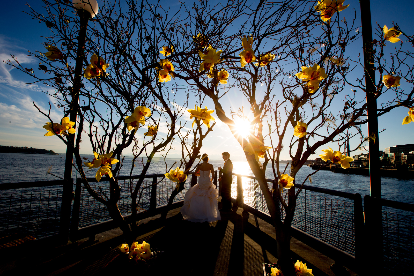 The bride & groom are silhouetted as they watch the beautiful sunset on the Seattle waterfront during their wedding at the Seattle Aquarium. (Wedding Photography by Scott Eklund - Red Box Pictures)