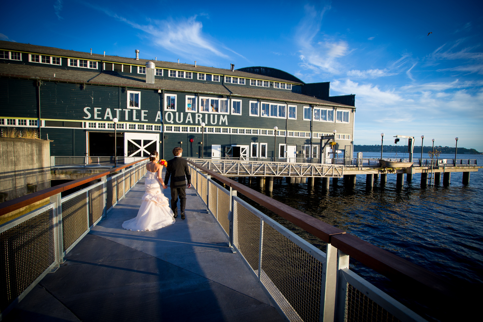 The bride and groom go for a stroll following their wedding ceremony at the Seattle Aquarium. (Wedding Photography by Scott Eklund - Red Box Pictures)