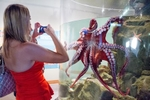 A guest takes a picture of an octopus at the wedding of Alina & Patrick at the Seattle Aquarium. (Photography by Suzanne Tennant/Red Box Pictures)