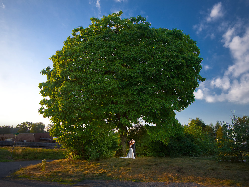 Bride and groom Michelle & Matt share a kiss and an embrace under a large oak tree after their wedding at The Attic in Sumner, WA. (Photography by Scott Eklund/Red Box Pictures)