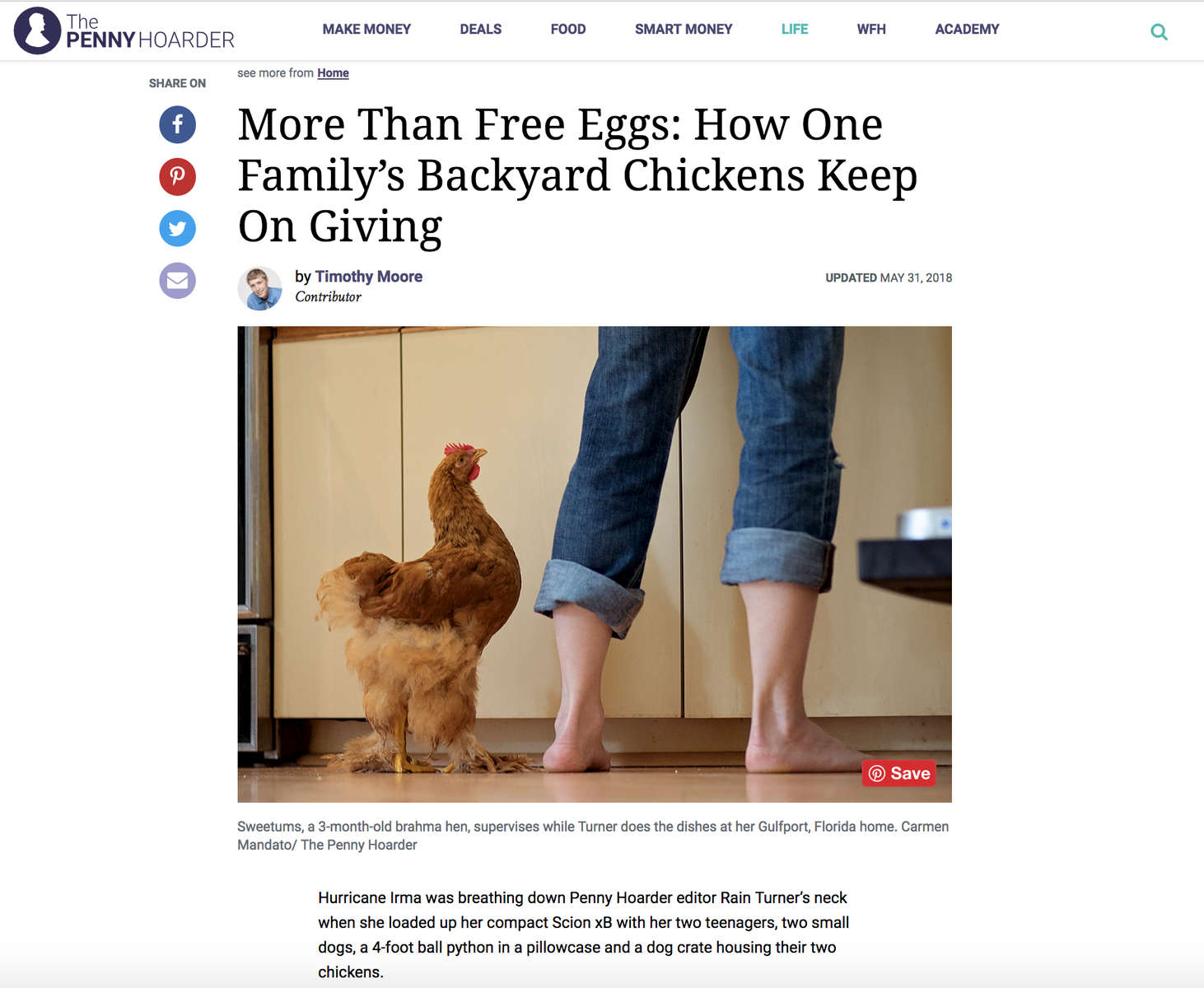 https://www.thepennyhoarder.com/life/backyard-chickens/?aff_id=2&aff_sub2=search