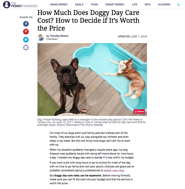 https://www.thepennyhoarder.com/life/is-doggy-day-care-worth-it-how-to-pick-the-right-place-for-your-pooch/