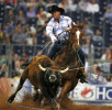 Rich Skelton of Llano, Texas competes in the team roping competition at the Houston Livestock Show and Rodeo on March 12, 2007.