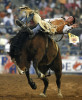 Chad Klein of Jackson, La competes in the Bareback Bronc Riding competition at Rodeo Houston on March 13, 2007.