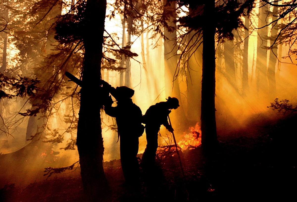 Firefighters work to extinguish hot spots and remove brush about one mile east of Emigrant Gap off Interstate 80 in the Tahoe National Forest in Nevada County, Calif. Tuesday, August 14, 2001.  More than 1,000 firefighters fought the blaze named the Sierra Nevada Gap fire which was initially reported on Sunday and burned over 2,000 acres by Tuesday.