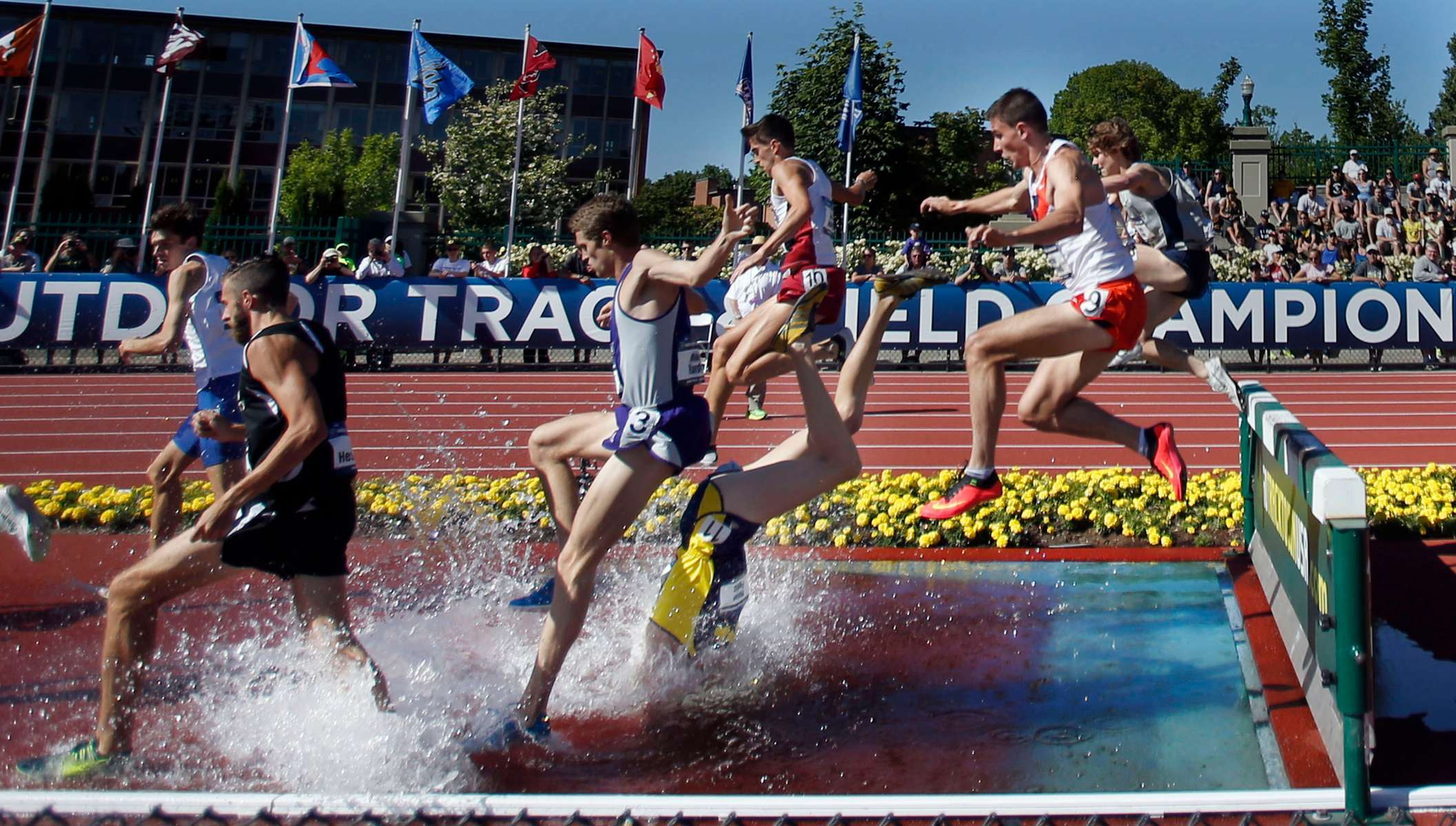 Michigan's Mason Ferlic nosedives into the water jump during the 3,000 steeplechase on the third day of the NCAA Track and Field Championships at Hayward Field in Eugene on Friday, June 12, 2015. Ferlic was unhurt in the incident and later tweeted out a photo of himself holding the photo that ran a full page in The Register-Guard sports section.