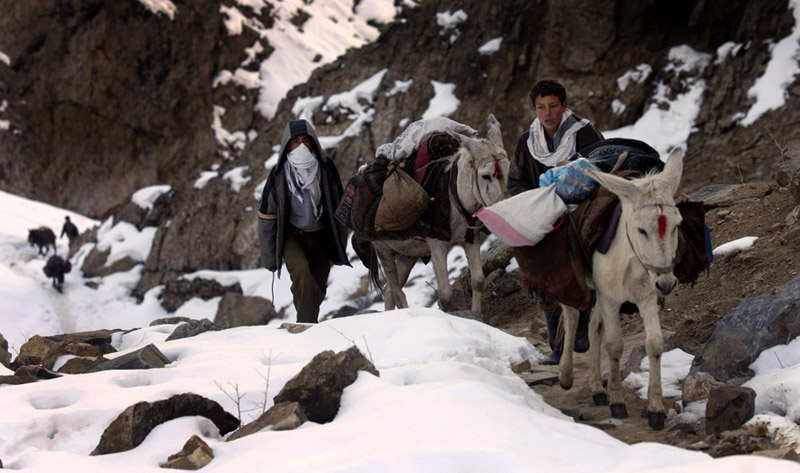 Boys lead their mules up steep and snowy slopes from Khenj, Afghanistan to the emerald mines. The boys make the trip up the mountain at least once a week.