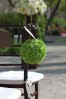 Green_Pomander_aisle_decor