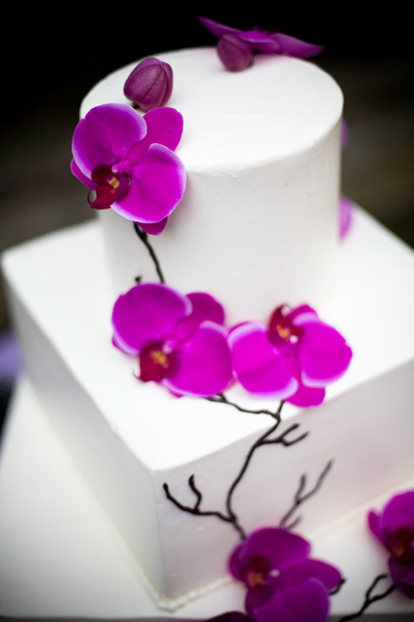 Phalenopsis_on_cake
