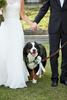 Piedmont-Park-Wedding-Photos-1018-0010