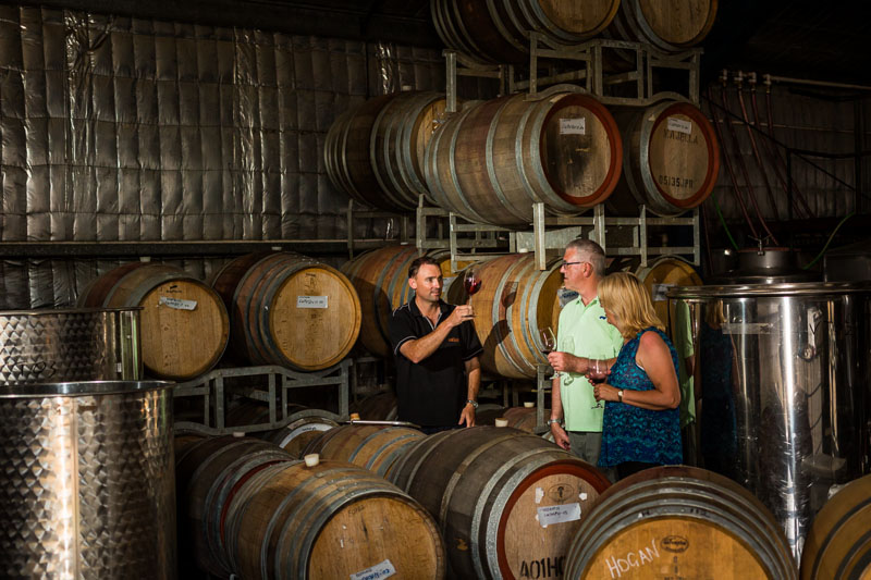 Mature couple doing a wine tasting amongst wine barrels aat Cofield Wines in Wahgunyah, Victoria