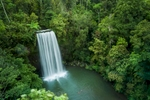 Aerial view of people swimming at Millaa Millaa Falls, Cairns