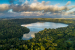 Aerial view over Lake Barrine, surrounded by rainforest on the Atherton Tablelands