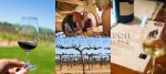 Lifestyle & Tourism Photography - Winery images from the renowned Barossa Valley wine region, Australia