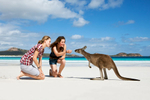 Two young women interacting with a kangaroo on a beautiful beach at Lucky Bay