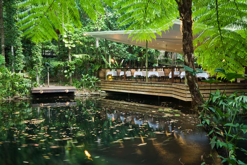 Julaymba Restaurant in the rainforest at Daintree Eco Lodge and Spa