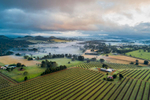 Aerial view of farmland and morning mist on the Atherton Tablelands