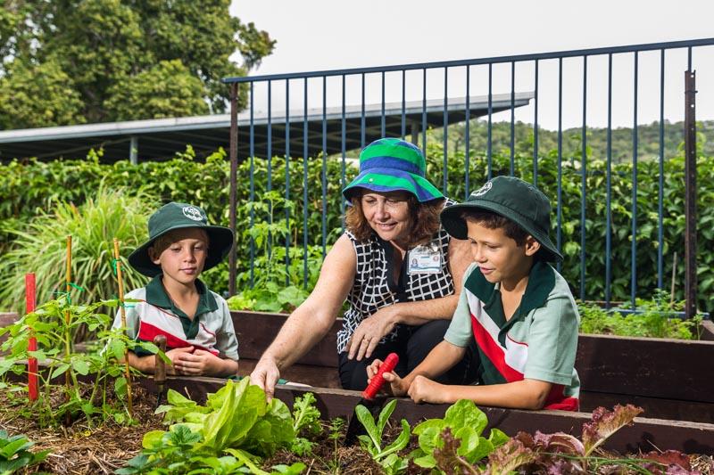 Teacher assisting students gardening in the school vegetable garden