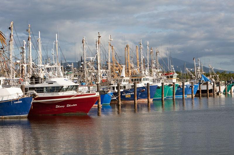 Trawler fishing boats moored at trawler base, Cairns