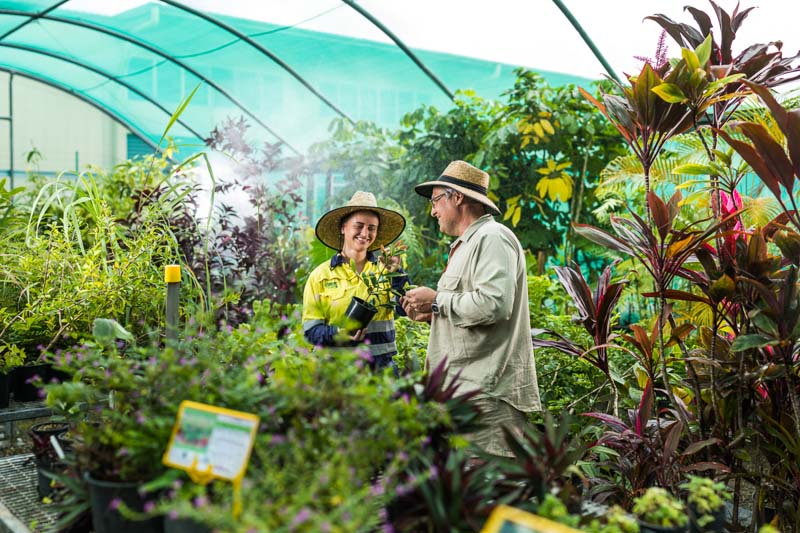 A horticulture teacher assisting student with plants in greenhouse, Cairns